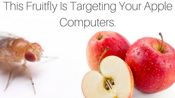 Fruitfly Malware Protection